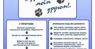 У Сумах пройде акція на допомогу бездомним тваринам