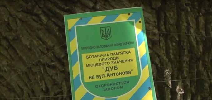 Якою буде мінімальна пенсія в Україні