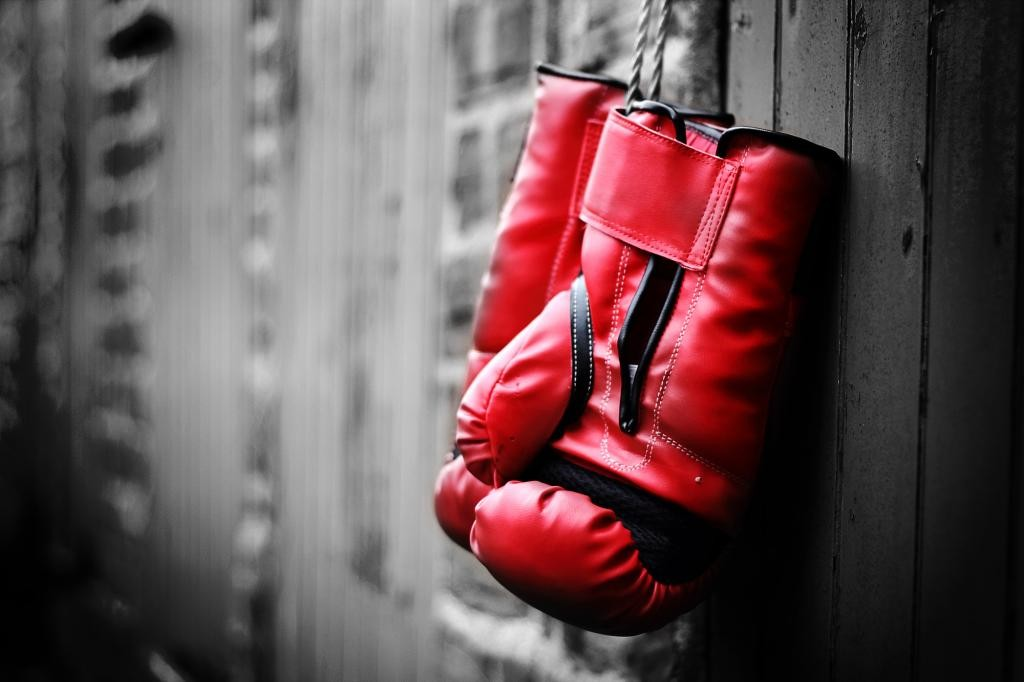 1495024749_boxing-gloves-1024x682