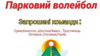 На Сумщині пройде турнір з паркового волейболу