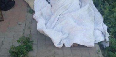 У Сумах вбили екс-керівника земуправління Анатолія Жука (фото)