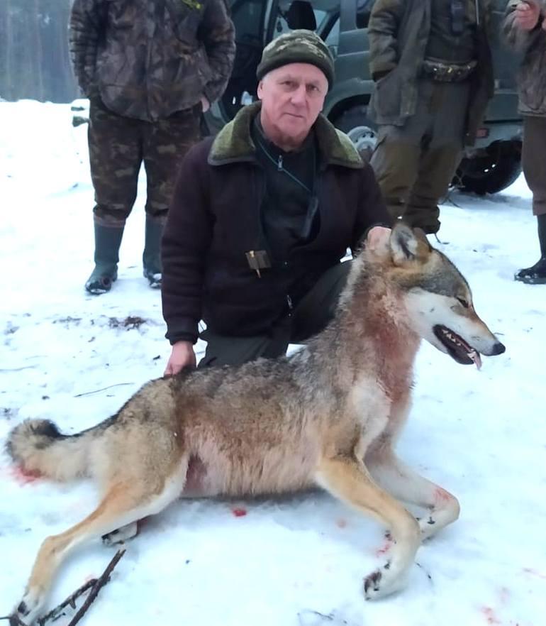 На півночі Сумщини мисливці похвалилися, що вбили вовка (фото)